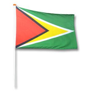 Vlag Guyana